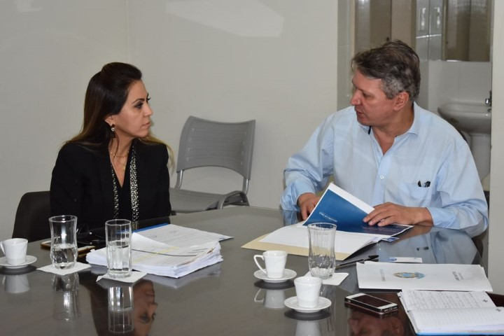 Elis Regina, superintendente do HSJD